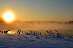 Het landschap van de de winterzon Royalty-vrije Stock Afbeelding