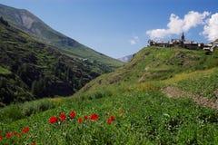 het landschap van de de zomerberg Royalty-vrije Stock Fotografie