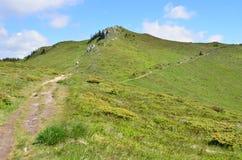 Het landschap van de de zomerberg Stock Fotografie