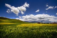 Het landschap van de de zomerberg met bewolkt gebied en wolken, Royalty-vrije Stock Afbeeldingen