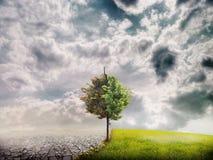 Het landschap van de ecologie stock afbeelding