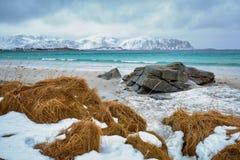 Het landschap van de Eilanden van Lofoten Stock Afbeeldingen