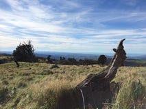Het Landschap van de Hawkesbaai Royalty-vrije Stock Fotografie