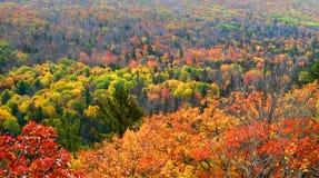 Het landschap van de herfst royalty-vrije stock afbeelding