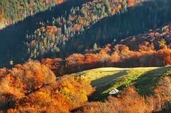 Het landschap van de herfst Stock Afbeelding