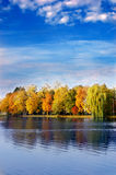 Het landschap van de herfst Stock Foto's