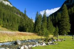 Het landschap van de herfst in bergen. Royalty-vrije Stock Fotografie