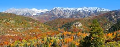 Het landschap van de herfst in Colorado royalty-vrije stock foto