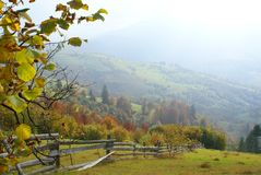 Het landschap van de herfst in Karpatische Bergen royalty-vrije stock afbeeldingen