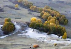 Het landschap van de herfst Kleurrijke bladeren in bos Stock Foto