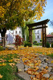 Het landschap van de herfst met gele bladeren Royalty-vrije Stock Afbeelding