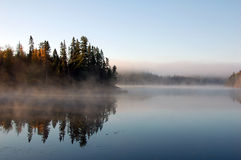 Het landschap van de herfst met mist stock foto
