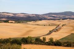 Het landschap van de herfst van Toscanië, cipressen en gebieden Royalty-vrije Stock Foto's