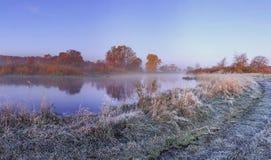 Het landschap van de de herfstaard van ijzige november-ochtend op rivierkust met rijp op gras en bomen stock foto's