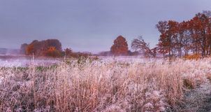 Het landschap van de de herfstaard in november Panorama op weide en bomen behandelde rijpdaling Landschap van de Herfstochtend royalty-vrije stock fotografie