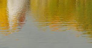 Het landschap van het de herfstdaglicht in water wordt weerspiegeld dat stock footage