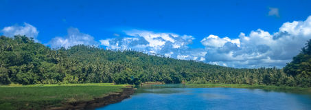 Het landschap van de kokosnotenberg stock afbeelding