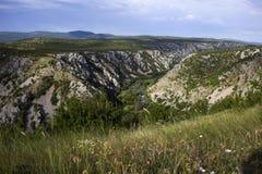 Het landschap van de Kruparivier Stock Fotografie