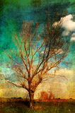 Het landschap van de kunst grunge - eenzame boom op de weide Stock Foto