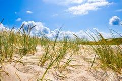 Het landschap van de kust Stock Foto's