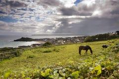 Het landschap van de kust in Cornwall Stock Afbeelding