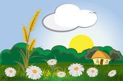 Het landschap van de landbouw Stock Foto