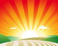 Het Landschap van de landbouw royalty-vrije illustratie