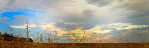 Het landschap van de landbouw stock afbeelding