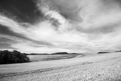Het Landschap van de landbouw Stock Afbeeldingen