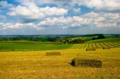 Het landschap van de landbouwgrond stock afbeelding