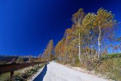 Het landschap van de landweg in de herfst Stock Foto's