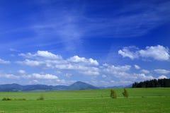 Het Landschap van de lente Royalty-vrije Stock Fotografie