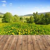 Het landschap van de lente Royalty-vrije Stock Foto