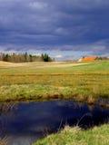 Het landschap van de lente Stock Foto's