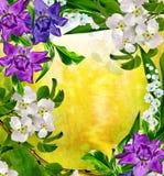 Het landschap van de lente Bloeiende peer Stock Fotografie