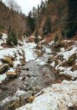Het landschap van de lente in de bergen Stock Fotografie