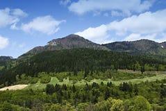 Het landschap van de lente met berg Stock Afbeeldingen