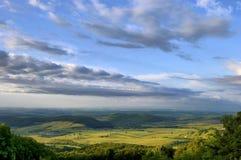 Het landschap van de lente met groen gras en blauwe hemel Stock Afbeelding
