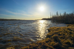 Het landschap van de lente Op de banken van Ob-rivier Royalty-vrije Stock Afbeeldingen