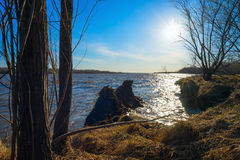 Het landschap van de lente Op de banken van Ob-rivier Stock Foto