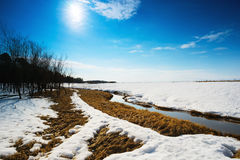 Het landschap van de lente Siberië, Yugra Royalty-vrije Stock Afbeeldingen