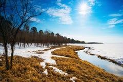 Het landschap van de lente Siberië, Yugra Stock Foto's