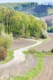 Het landschap van de lente, Tsjechische Republiek Royalty-vrije Stock Afbeelding