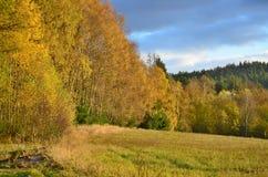 Het landschap van de meningsherfst, zuidelijke Bohemen, Tsjechische Republiek Stock Fotografie