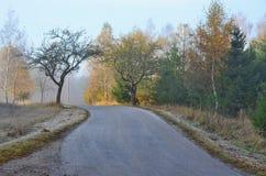 Het landschap van de meningsherfst, zuidelijke Bohemen, Tsjechische Republiek Royalty-vrije Stock Afbeeldingen
