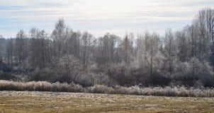 Het landschap van de meningsherfst, zuidelijke Bohemen, Tsjechische Republiek Stock Foto