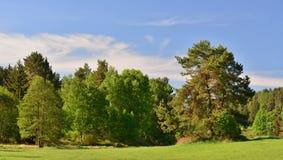 Het landschap van de meningslente, zuidelijke Bohemen, Tsjechische Republiek Stock Afbeelding