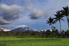 Het landschap van de Merapivulkaan, Java, Indonesië Royalty-vrije Stock Afbeeldingen