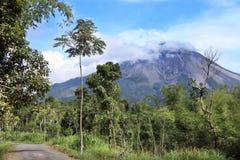 Het landschap van de Merapivulkaan, Java, Indonesië Stock Foto's
