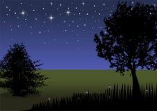 Het landschap van de nacht met boom Stock Foto